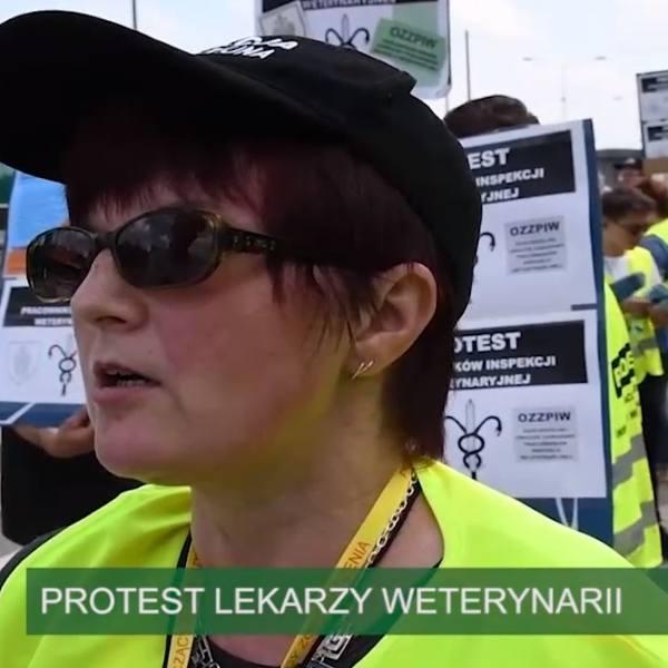 Strefa Agro. Protest lekarzy weterynarii i podwyżki. Dopłaty do wapnowania