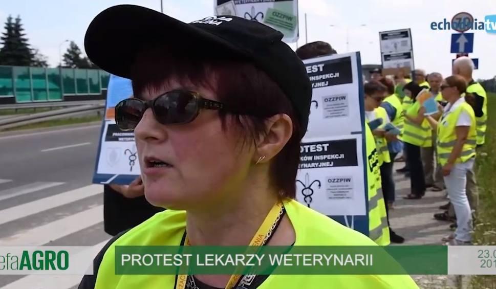 Film do artykułu: Strefa Agro. Protest lekarzy weterynarii i podwyżki. Dopłaty do wapnowania