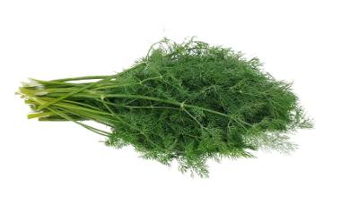 Na bazie koperku można przygotować wyśmienity sos do grillowanych warzyw i mięs.
