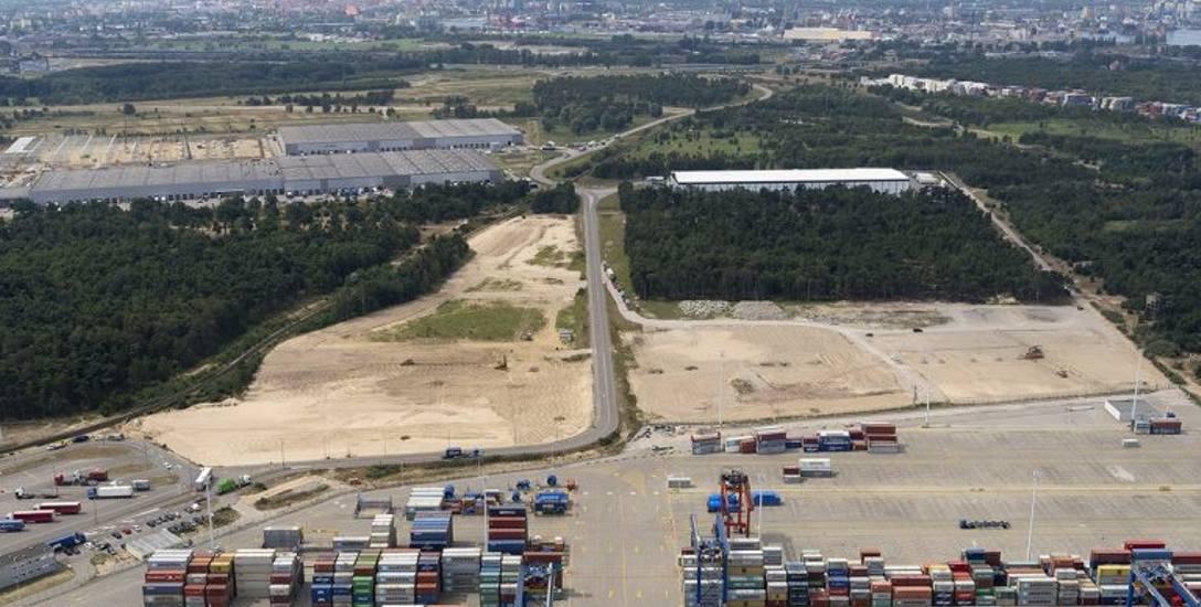 Terminal kontenerowy DCT 2 powiększa się. Prace budowlane już się zaczęły