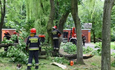 Wiele pracy na okresie ostatnich trzech miesięcy mieli łódzcy strażacy. Wichury łamały drzewa, gwałtowne deszcze zalewały ulice
