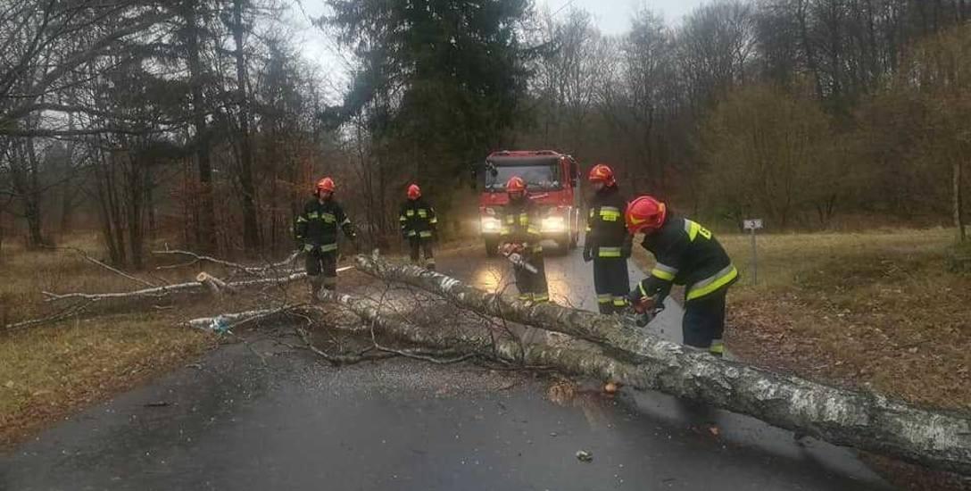 1 stycznia około godz. 13.30 strażacy ochotnicy z Dretynia usuwali powalone drzewo z drogi powiatowej we wsi Broczyna (gm. Trzebielino)