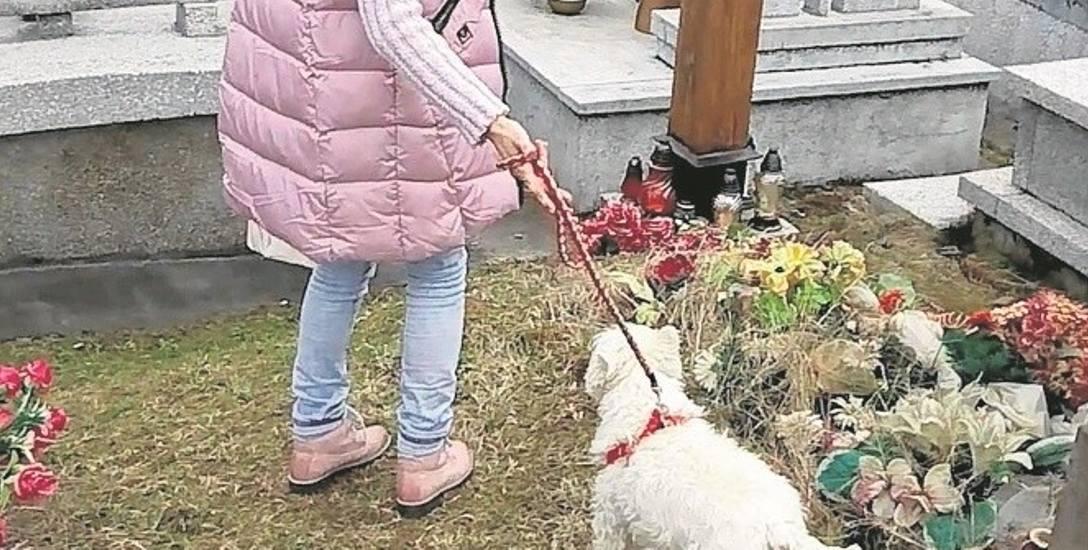 Zdaniem Bartosza Locha, wprowadzanie psów na cmentarz obraża uczucia religijne osób, które mają tu zmarłych