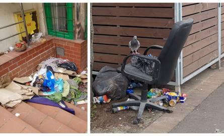 Szczecin. Podzamcze zaśmiecone nawet w czasie pandemii. Martwe szczury i worki ze śmieciami leżą na ulicach