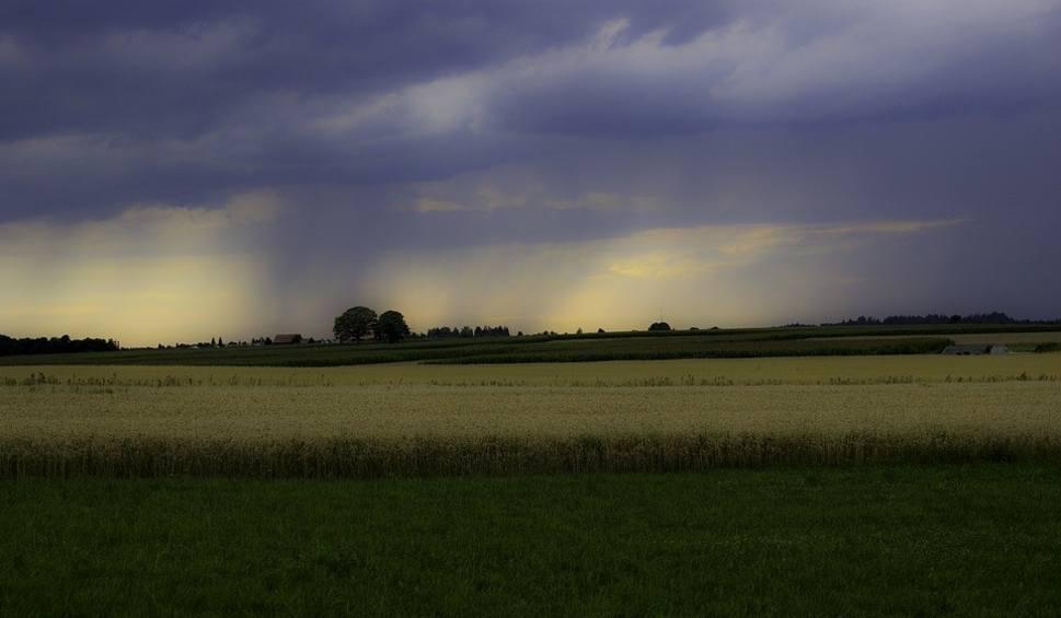 Film do artykułu: Prognoza pogody dla rolników. [19-31 SIERPNIA] Aura nie będzie łaskawa. Częste opady deszczu