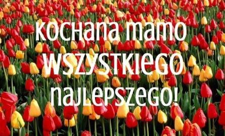 Życzenia dla mamy. Najpiękniejsze kartki i wierszyki na Dzień Matki [SMS, Facebook, Twitter]