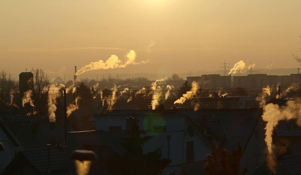 Film do artykułu: Co Polacy wiedzą o smogu? Czy chcą, by ktoś im mówił, czym mają ogrzewać dom?