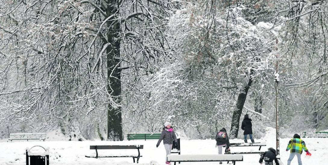 Pierwsze zabawy na śniegu i lepienie bałwana