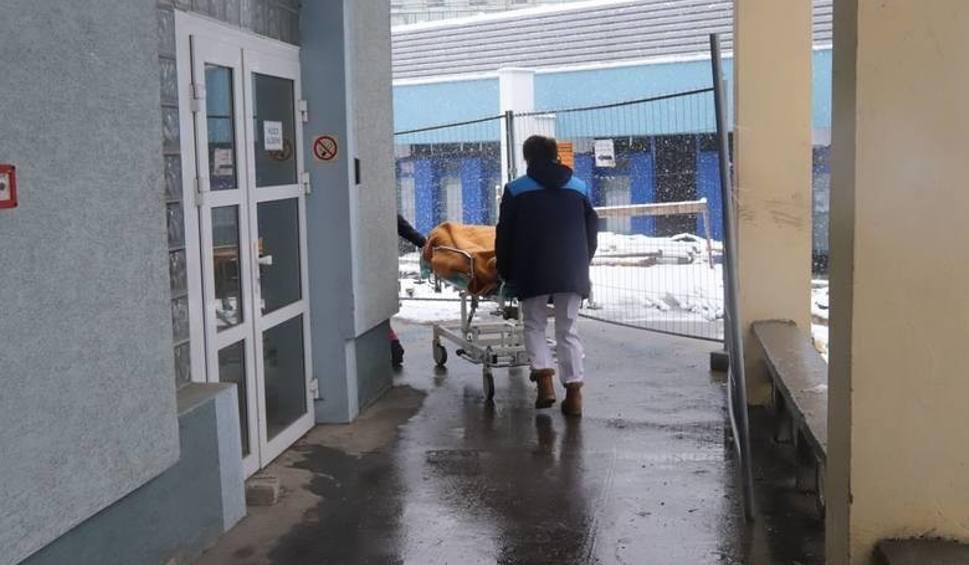 Film do artykułu: Koronawirus w Polsce? Jeden z trzech testów kobiety, która wróciła z Tajlandii, miał wynik dodatni