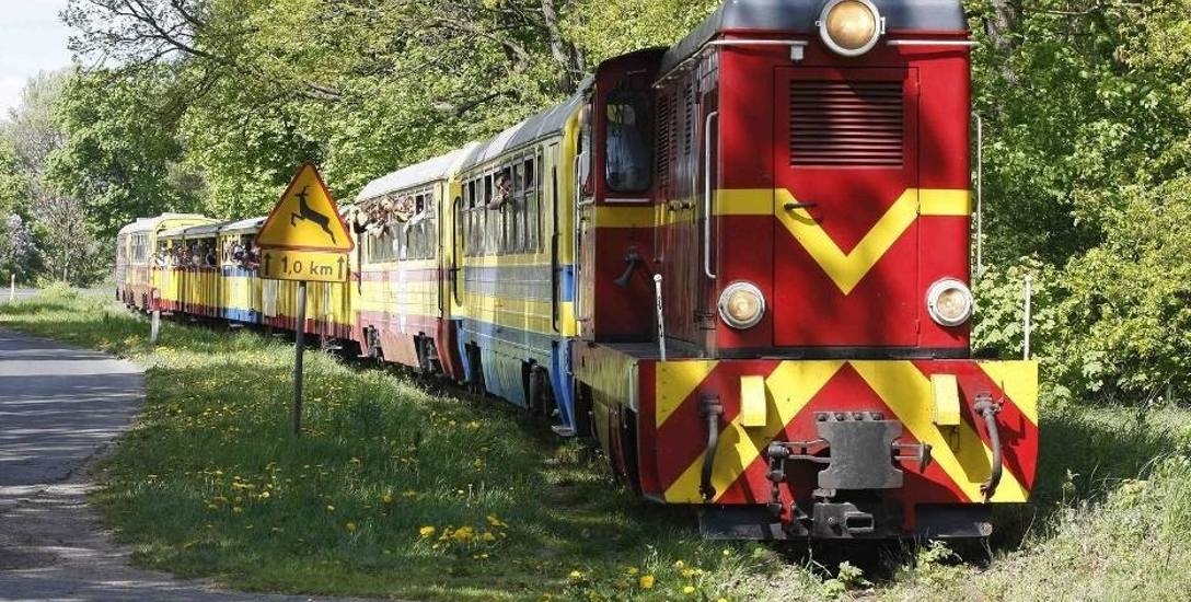 Żuławska Kolej Dojazdowa: rozwój czy upadek?