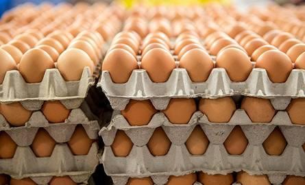 Jak odróżnić jajka z Polski od jajek z Holandii i Belgii?