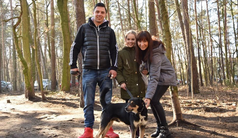 Film do artykułu: Zielona Góra. Prawdziwe tłumy zielonogórzan na walentynkach w schronisku dla bezdomnych zwierząt. Mamy zdjęcia z akcji! [ZDJĘCIA]
