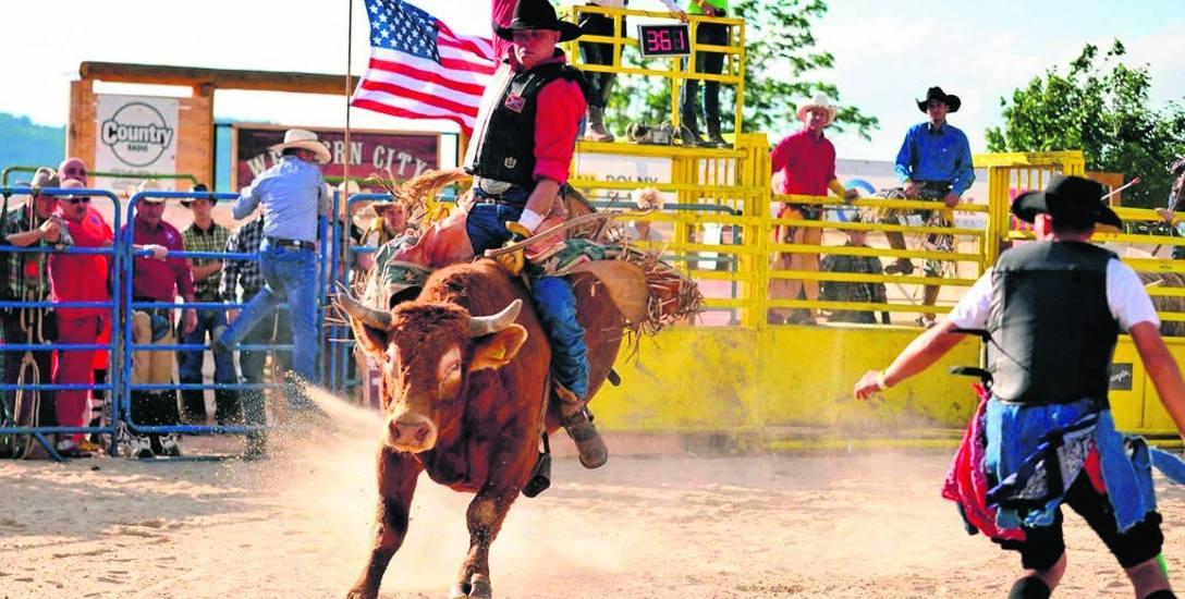 Kowboj z Oświęcimia jest mistrzem w ujeżdżaniu dzikich koni i byków