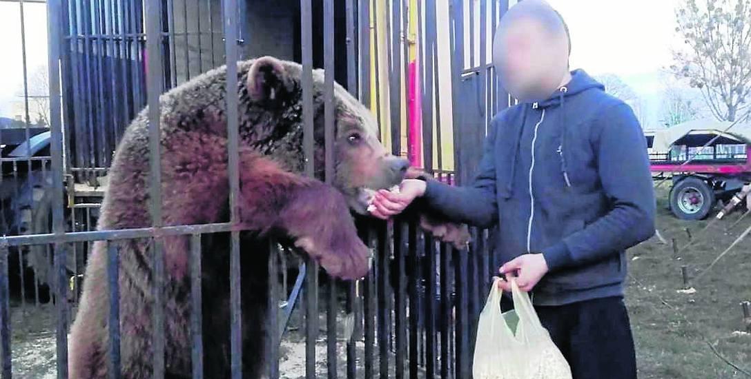 Tragiczny żywot niedźwiedzia Baloo w cyrku. Czas na proces