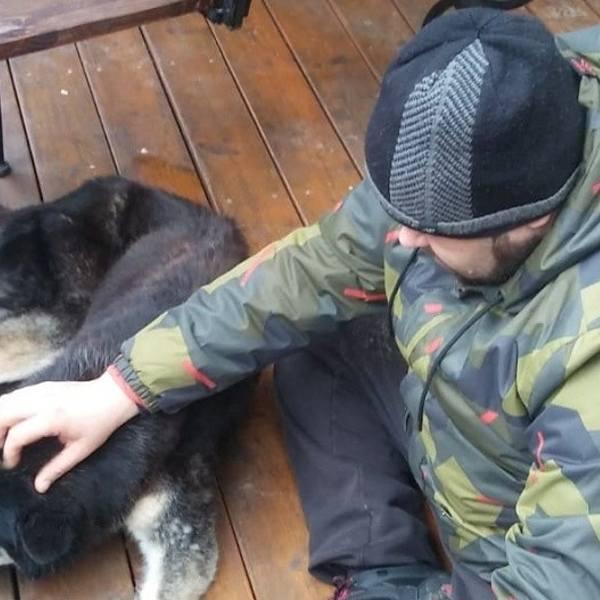 Lębork: Policjant po służbie uratował zakleszczonego psa. To wypadek czy znęcanie się?