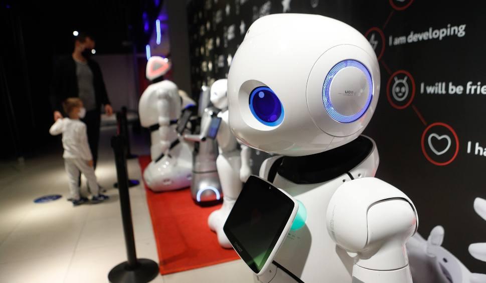 Film do artykułu: Interaktywne roboty na wystawie w Millenium Hall [FOTO, WIDEO]
