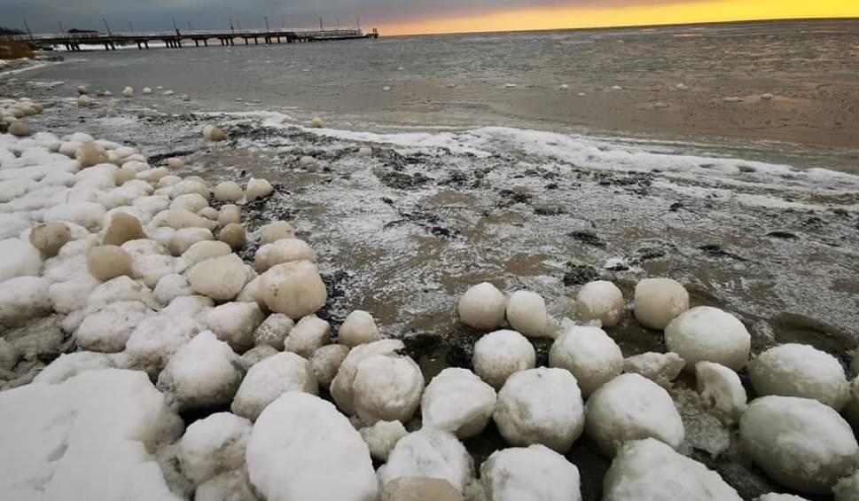 Film do artykułu: Lodowe kule na plaży w Jastarni! Niezwykłe zjawisko na brzegu Zatoki Puckiej. Morszkulce to zimowa atrakcja! Zobacz zdjęcia