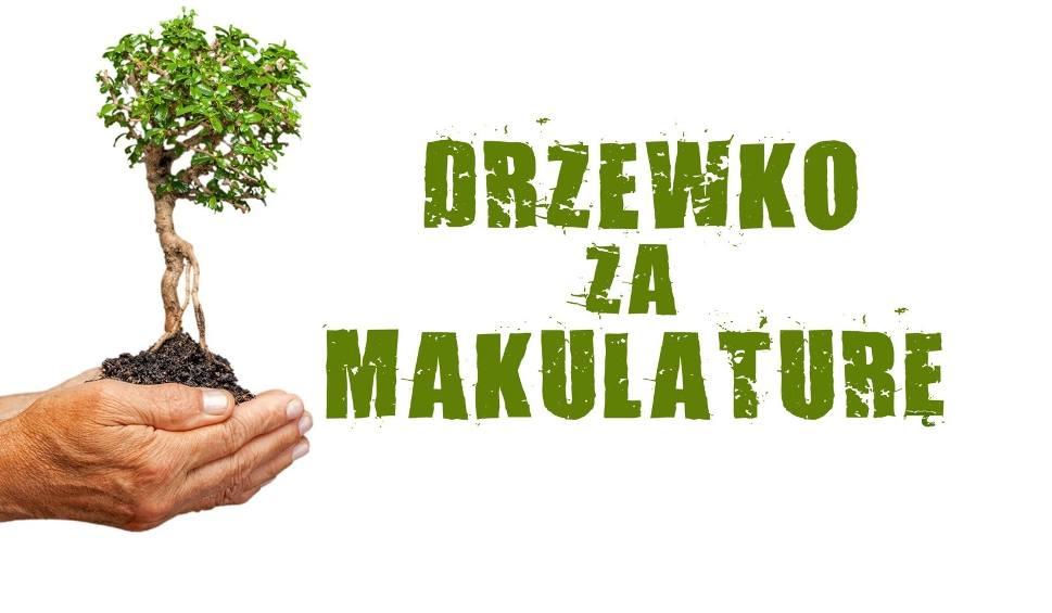 """Film do artykułu: Drzewko za makulaturę. Akcja """"Dziennika Bałtyckiego"""" na Pomorzu [zdjęcia, wideo]"""