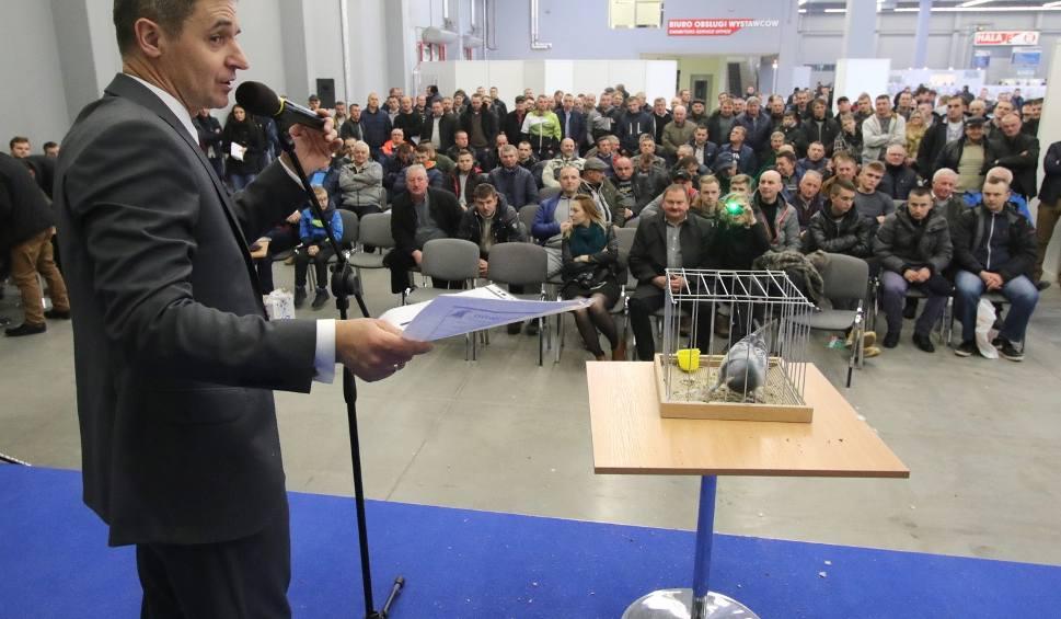 Film do artykułu: Aukcja gołębi w Targach Kielce. Zebrano dużą kwotę (WIDEO, zdjęcia)