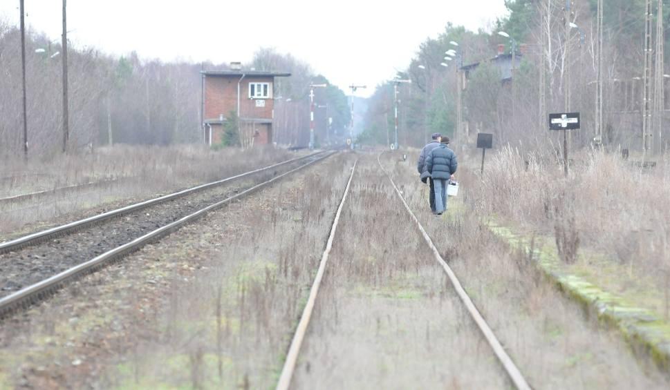 Film do artykułu: Kolej w Lubuskiem. Będzie siedem dużych inwestycji? Jakie lubuskie pomysły przeszły kwalifikacje w programie Kolej Plus?