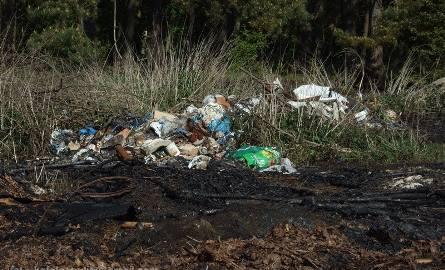 Pożar na dzikim wysypisku w Drzonkowie