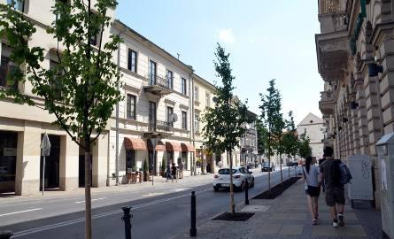 Zieleń w Lublinie: drzewa na Kołłątaja pojawiają się i znikają