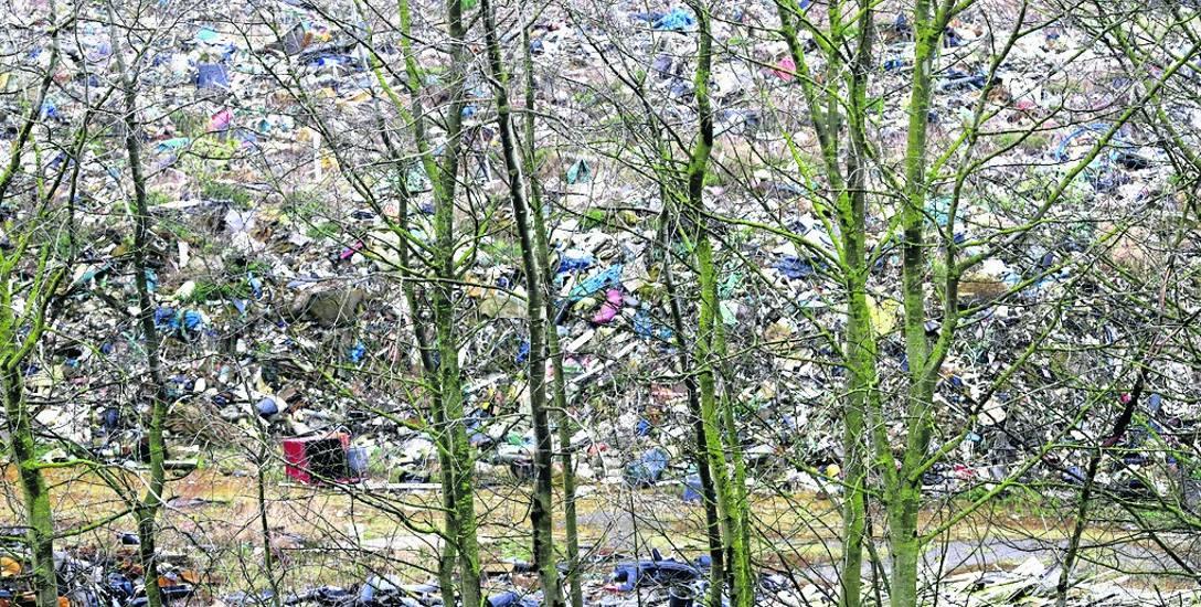 Sąd nakazał spółce Ecorama usunięcie hałd odpadów. Przedstawiciele spółki nie wykonali wyroku