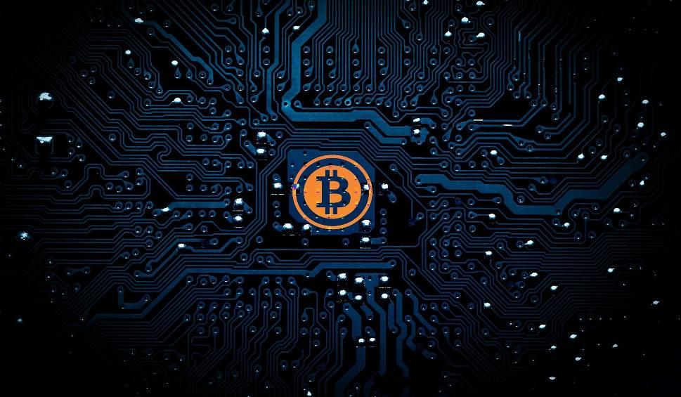 Bitcoin Cash Kurs Pln
