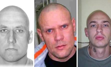 Przestępcy z Kujawsko-Pomorskiego. Szuka ich policja z regionu! Sprawdź, czy kogoś rozpoznasz [zdjęcia]
