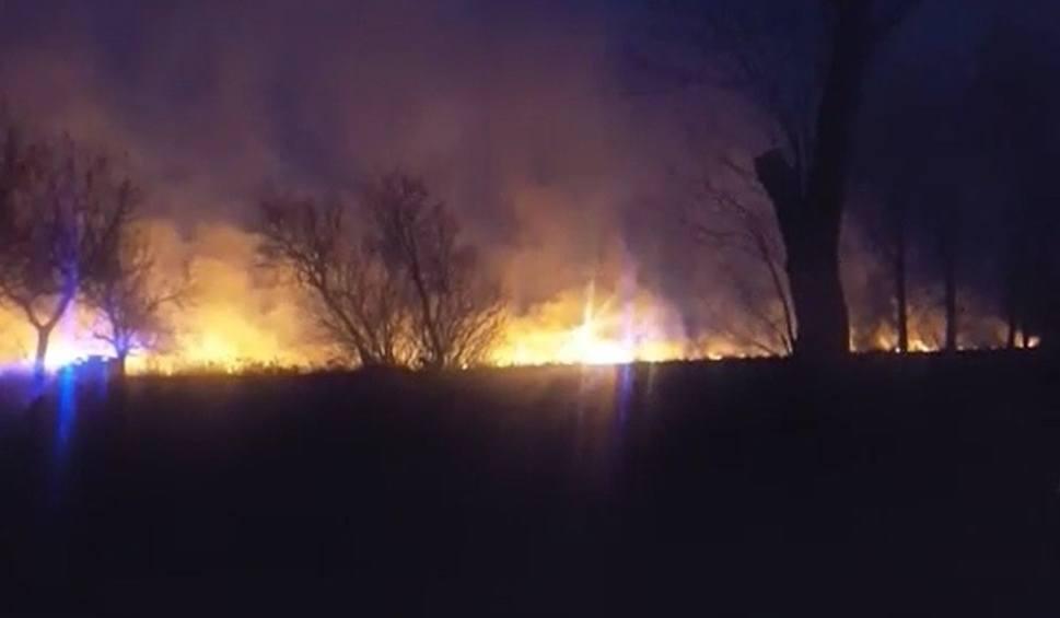 Film do artykułu: Pożar traw w powiecie radziejowskim [wideo od Czytelnika]
