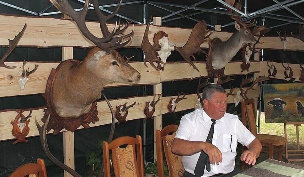 Polowanie na jelenie online dating