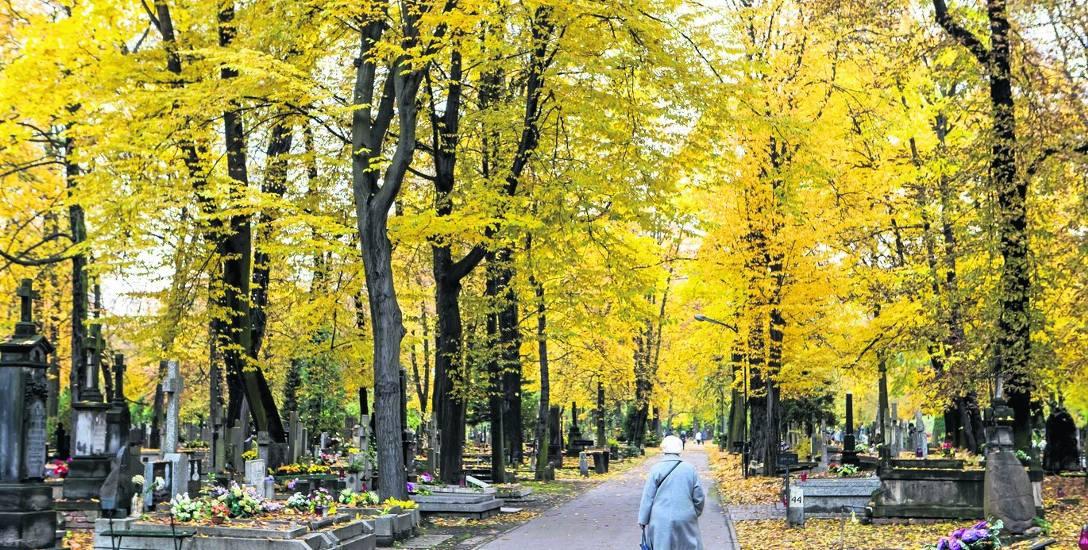 Od kilku dni na starym, słupskim cmentarzu pojawia się coraz więcej osób sprzątających nagrobki na rodzinnych grobach