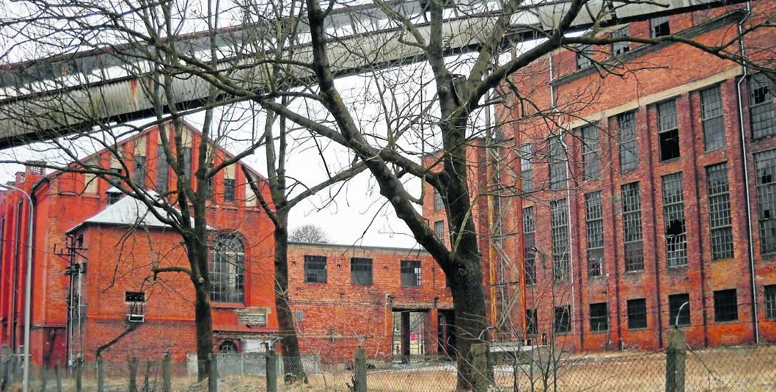 Elektrociepłownia kiedyś należała do prudnickiego Froteksu. Od 2011 roku jest w rękach spółki z województwa śląskiego.