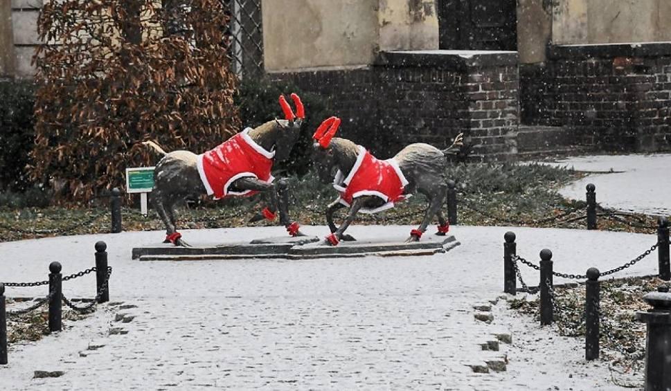 Film do artykułu: Deszcz ze śniegiem zapowiadają synoptycy. To będzie pochmurny i deszczowy weekend [PROGNOZA POGODY]