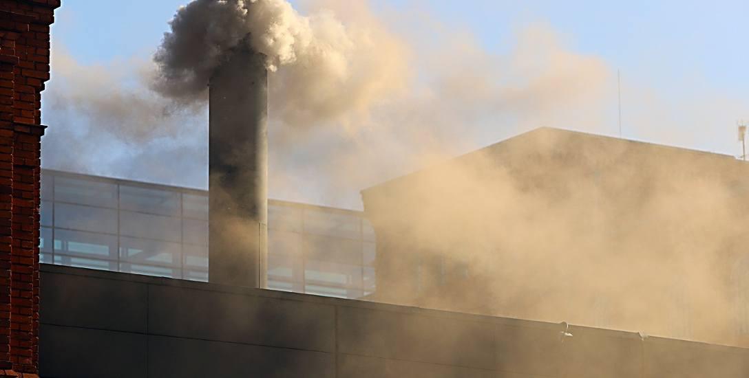 Lepsza jakość powietrza w Łodzi. Powód? Ciepła zima i mniej aut na ulicach