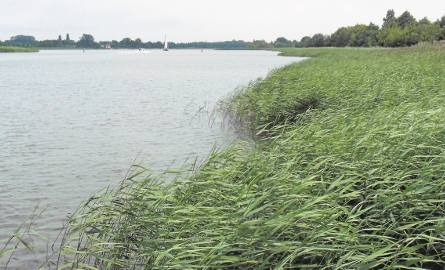 Po drugie: Autostrada wodna na Wiśle. Gminy nadwiślańskie mają być bezpieczniejsze
