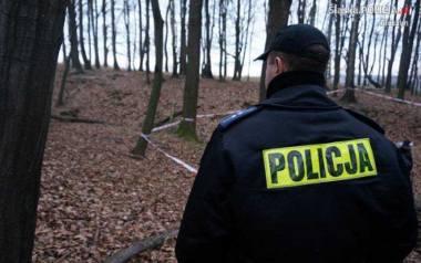 Las pod Dębowcem na Śląsku Cieszyńskim, gdzie doszło do zabójstwa 23-latka