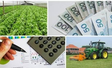 Rolnik może więcej dorobić. I nie straci ubezpieczenia w KRUS