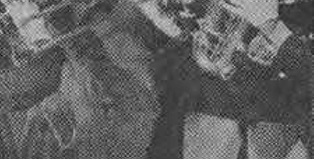 """Konkurentką Sławy Przybylskiej w Białymstoku była Liana Antonowa. """"Solistka  w otoczeniu orkiestry śpiewa jedną z uroczych piosenek, jakie usłyszymy"""