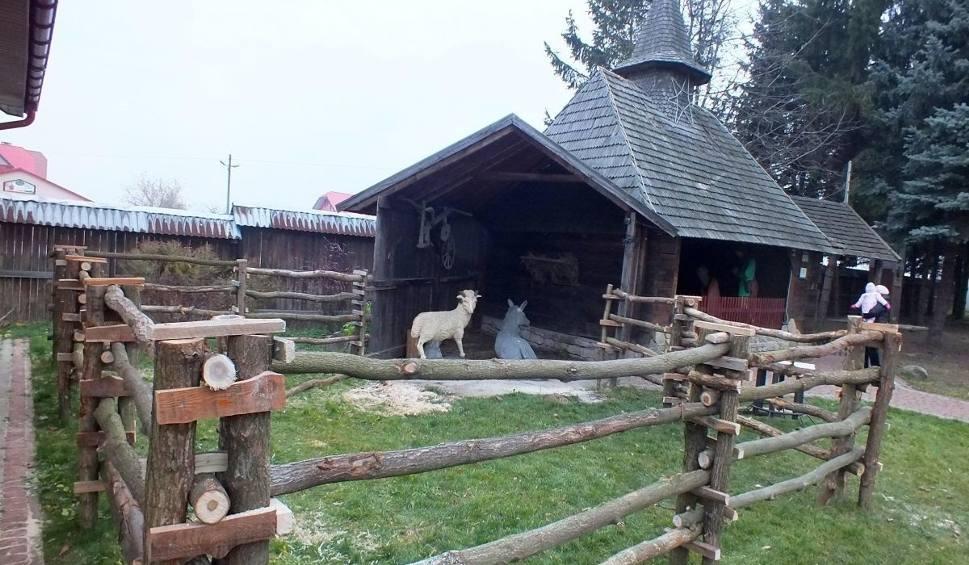 Film do artykułu: Żywa szopka w Kałkowie ze zwierzętami z miejscowego Mini ZOO