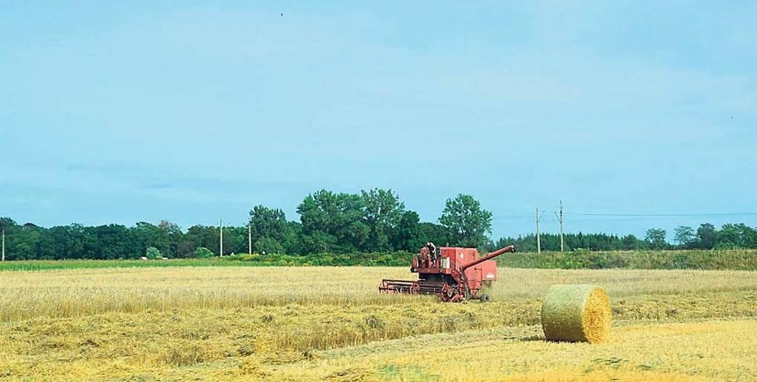 - W ramach pomocy dla gospodarstw rolnych poszkodowanych przez suszę, w 2018 r. rolnicy z Zachodniopomorskiego otrzymali blisko 300 mln zł - mówi Emilia