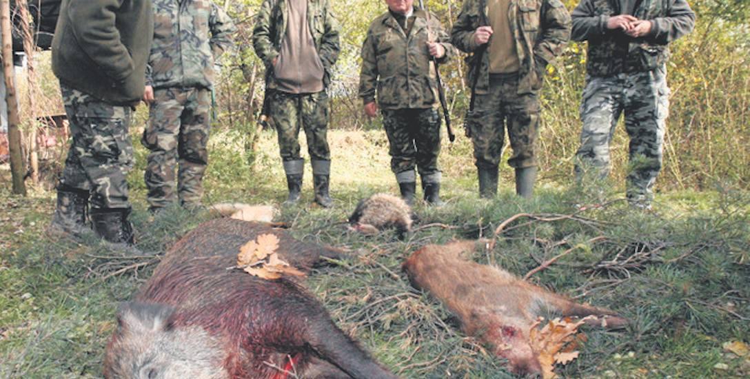 Polowanie na zwierzęta jest okrutne. Myśliwym to nie przeszkadza