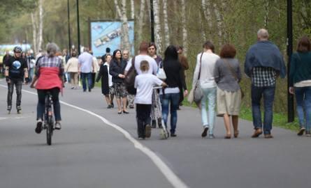 Przewodnicy turystyczni z PTTK Szlak Brdy w Bydgoszczy zapraszają w tym miesiącu na kolejne wycieczki. W programie są wyprawy po naszym regionie, a także
