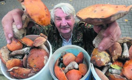 Wysyp grzybów spowodował, że ich cena na targowiskach jest teraz bardzo niska