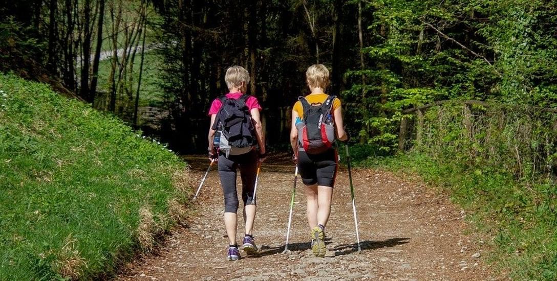 Finał Pucharu Polski Nordic Walking najlepszym produktem turystycznym na Podlasiu
