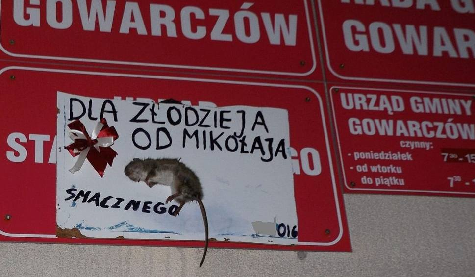 Film do artykułu: Martwy szczur na ścianie urzędu gminy w Gowarczowie! Policja bada sprawę