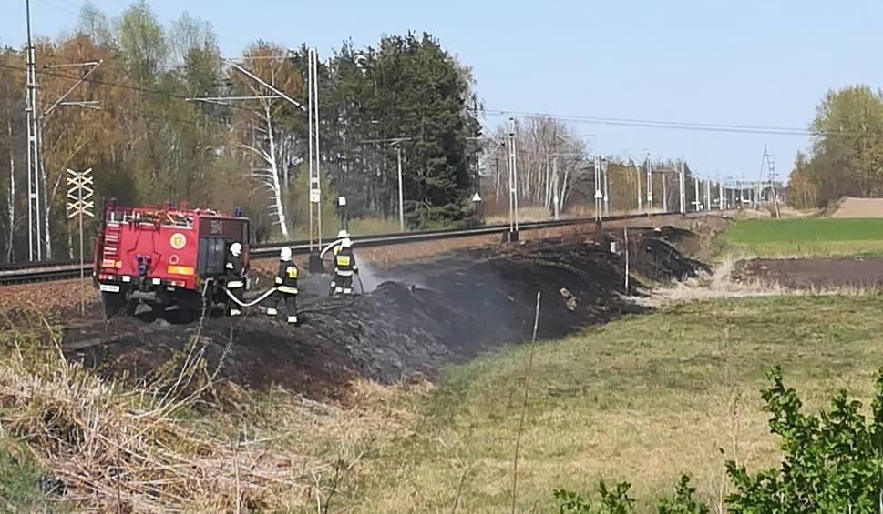 Film do artykułu: Pożar traw przy linii kolejowej w regionie. Ruch pociągów wstrzymany