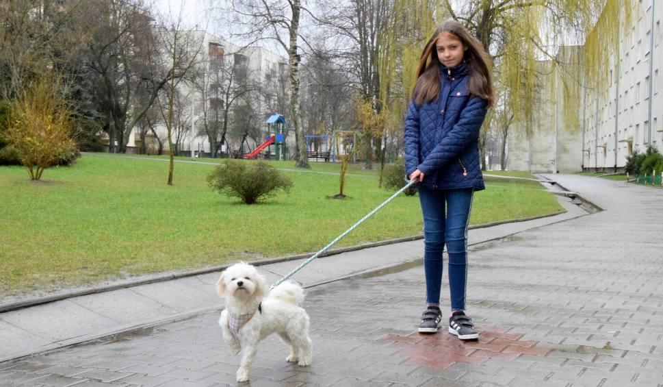 Film do artykułu: Gabrysia z Kielc chce wyprowadzać pieski, aby pomóc mieszkańcom i zarobić na obóz jeździecki [WIDEO]