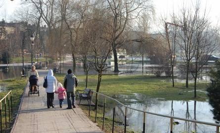 Park miejski w Mogilnie