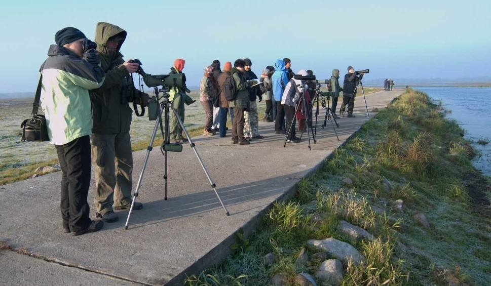 """Film do artykułu: Zapowiada się niezwykła wycieczka po Parku Narodowym """"Ujście Warty"""""""